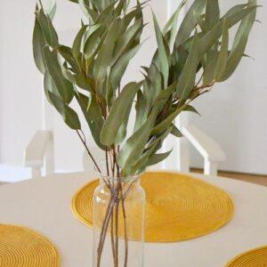 Lándzsás levelű eukaliptusz