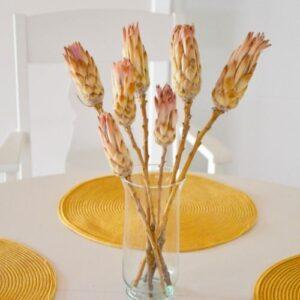 Natúr rózsaszín protea